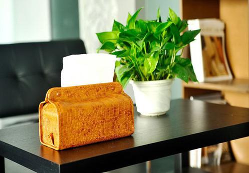 不同五行的人适合摆放哪些办公室风水植物?